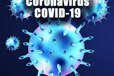 Coronavirus Update 5/29/2020